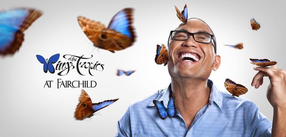 butterflies_blue@465.jpg