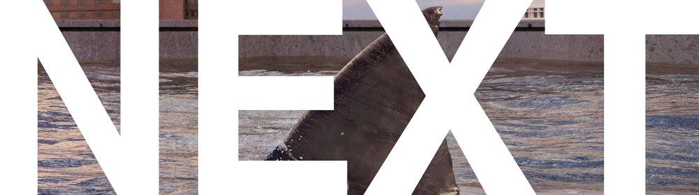 Buttons_Dens.jpg