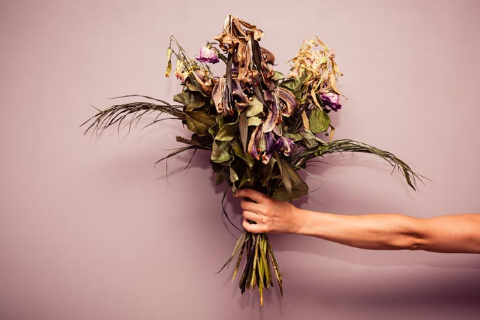 A bouquet of dead flowers