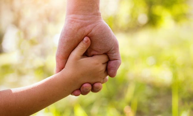 A child holding the hand of an adult, indicating the process of adoption