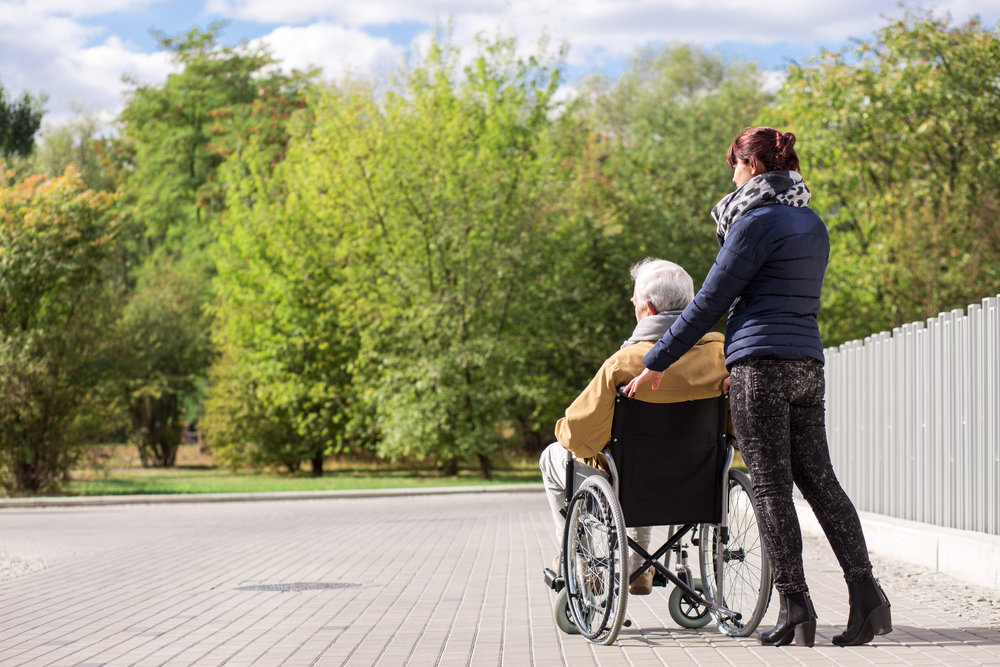 Person in wheelchair with carer