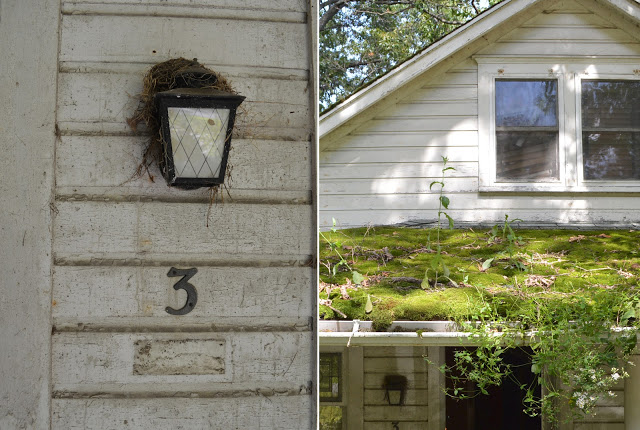Cottage+10.jpg