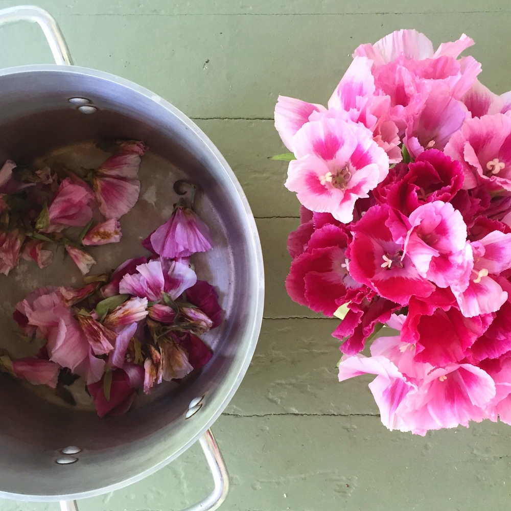 Dyeing & eco printing with Godetia flowers.