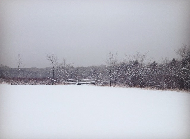 winter lake scene | photo by Phoebe Stout