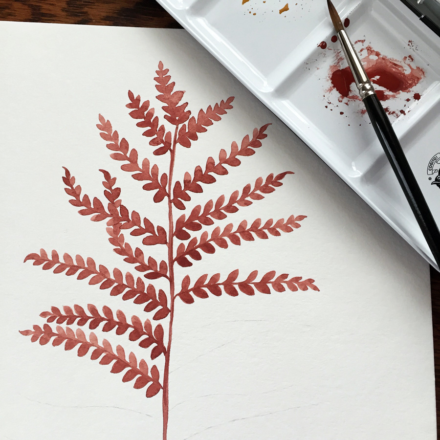 watercolor painting of fern by Phoebe Stout of Untold Imprint