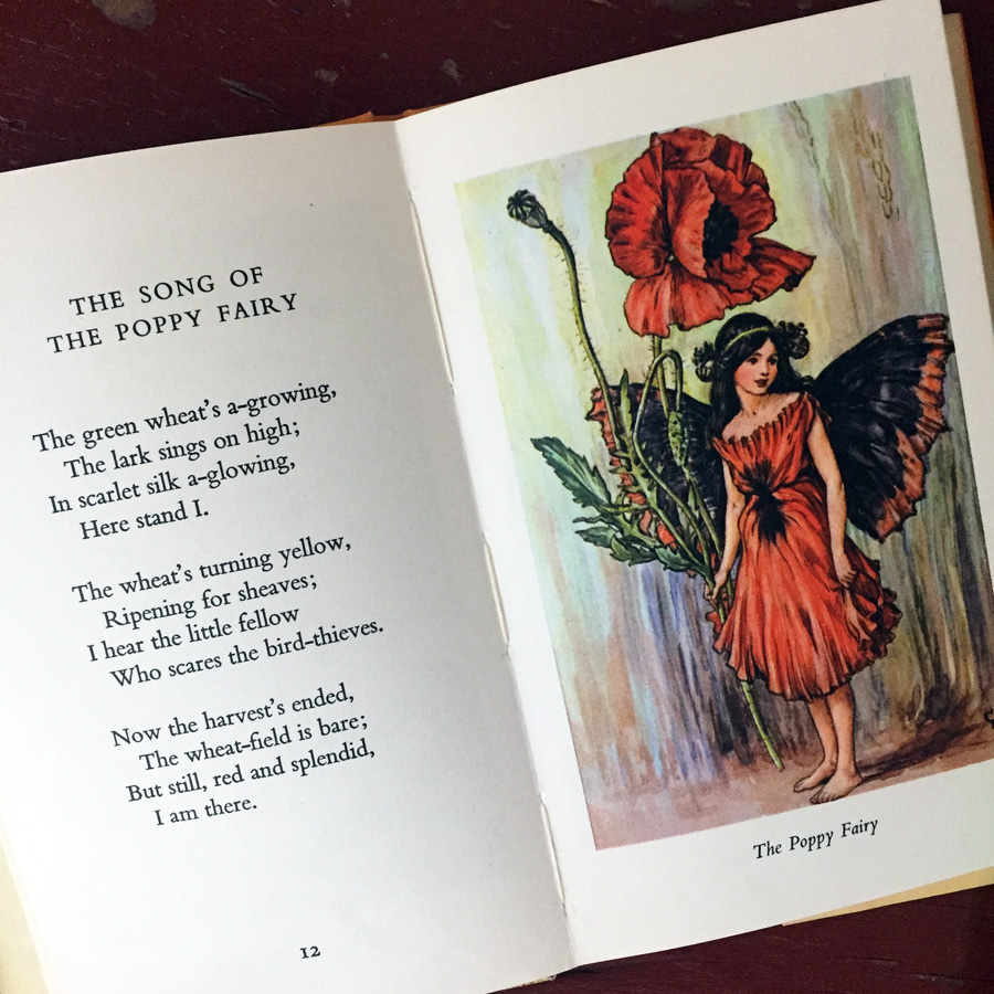 poppy fairy by Cicely Mary Barker.jpg