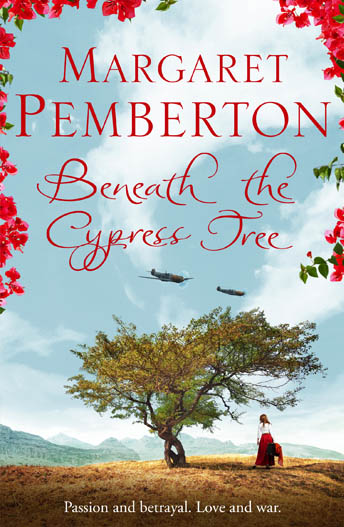 cypress tree.jpg