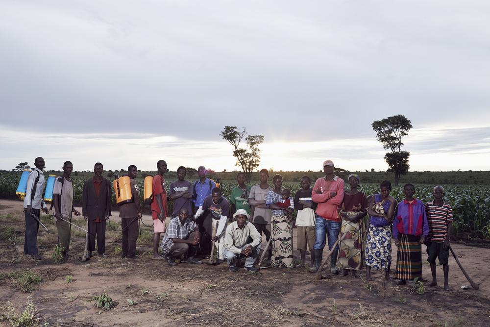 the AIMC farm team