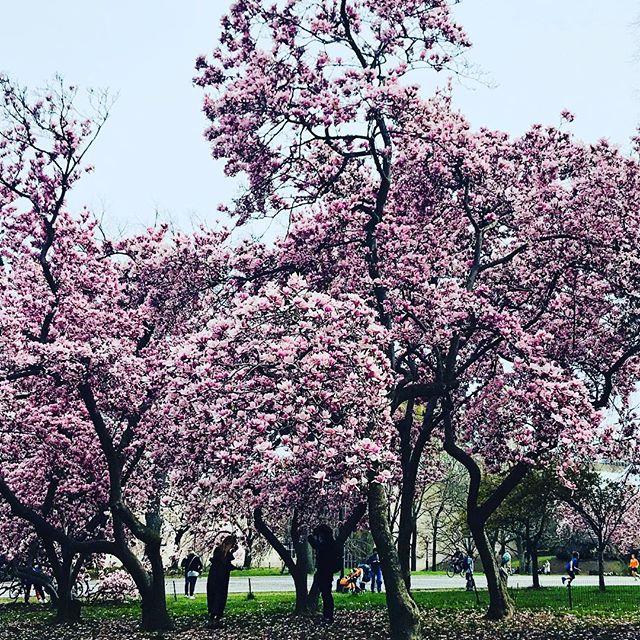 April ☔️'s... May 🌸's!