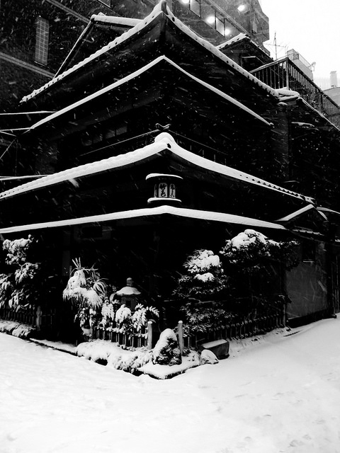 hiromitsu :      2014年 東京の大雪#15  by  sunuq  on Flickr.