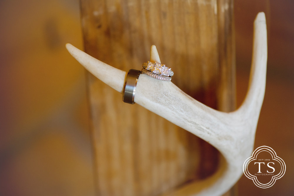 Wedding rings on a deer antler