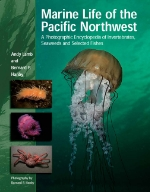 Marine Life of the Pacific Northwest.jpg