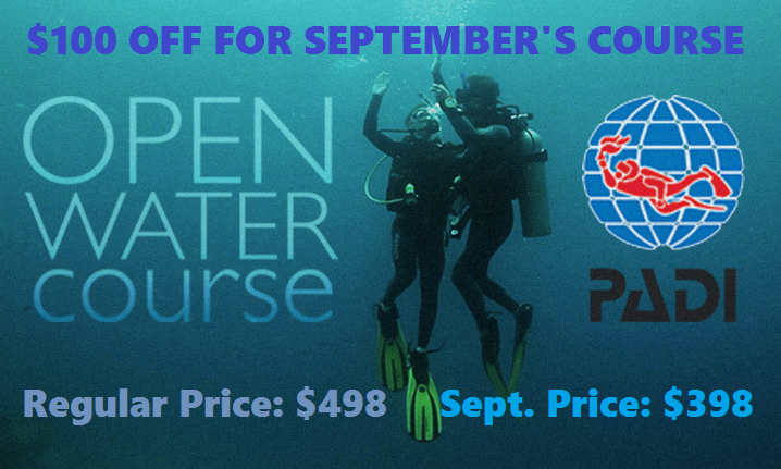 open water sale banner - sept.png