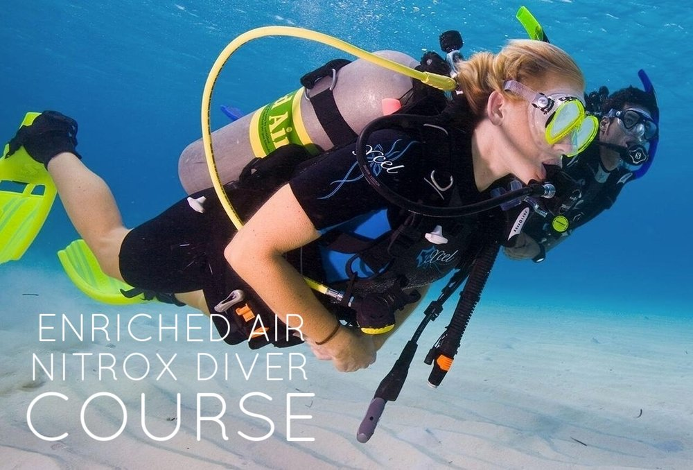 Want to dive longer and finish dives feeling less tired? The EAN Course teaches you to plan and safely dive with Nitrox Gas.