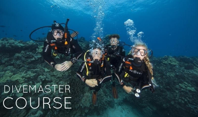 Love scuba diving? Take the PADI Divemaster course and do what you love to do as a career. As a PADI Divemaster, you'll lead others as you supervise scuba diving activities and assist with diver training, whether here in BC or far off on a sunny tropical island.  The PADI Divemaster course is your first level of professional training. Working closely with a PADI Instructor, you'll fine-tune your dive skills, like perfecting the effortless hover, and refine your rescue skills so you anticipate and easily solve common problems. You'll gain dive knowledge, management and supervision abilities so you become a role model to divers everywhere.