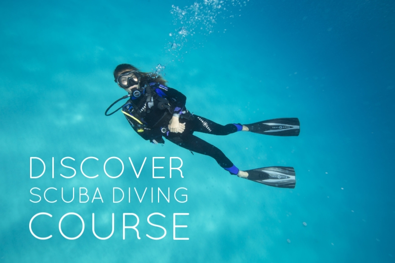 Not sure if Scuba Diving is for you? Take a Discover Scuba Experiance and see what it is like to breathe and scuba dive underwater in a controlled environment.