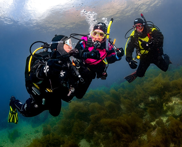 Private Dive Tours - Hire a Rowand's Reef Divemaster to transport & take you and your buddys out for 2 private shore dives on a date and time of your choosingexplore local and popular dive sites such as Whytecliff park, Porteau Cove & Kelvin Grove