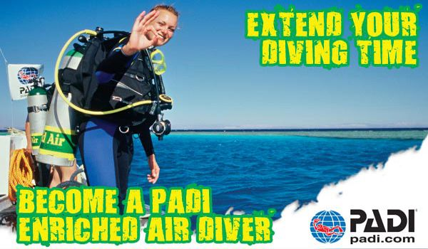 Have Any Questions? - Our Dive Team Is ready to help You continue your diving adventure today!