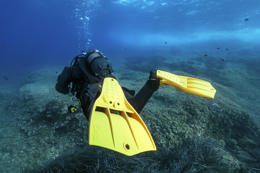 Have Any Questions? - Our Dive team is ready to help answer any question about perfecting your buoyancy with the PPB Specialty Course