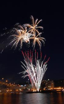 Fireworks_PDX_1.jpg