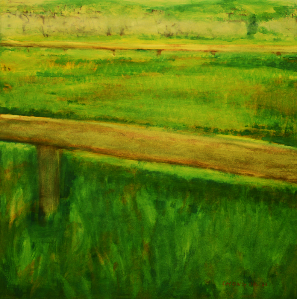 Menerbes Landscape series, 02