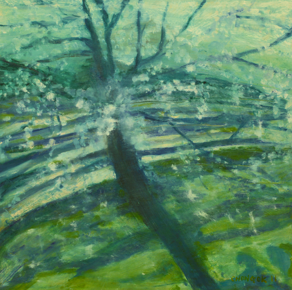 Menerbes Landscape series, 12