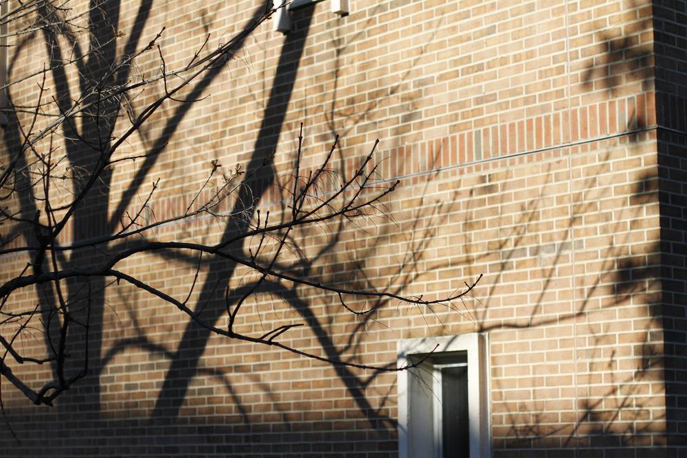 march30th_043_1.jpg