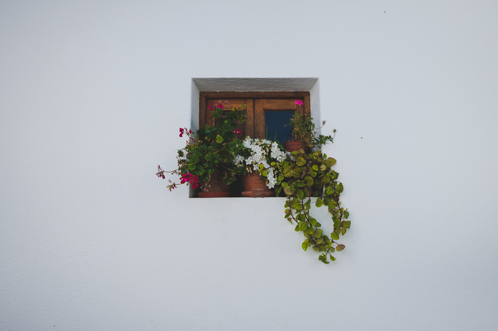 Andalusian window.
