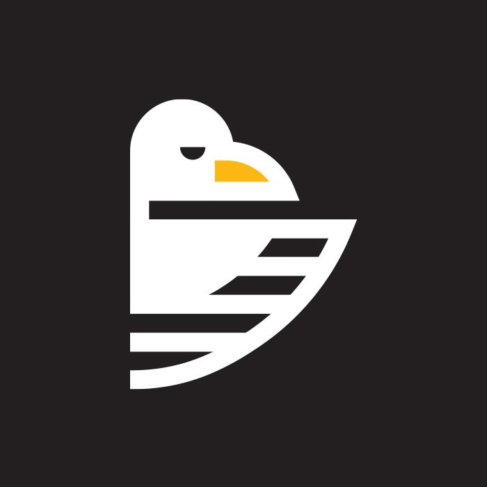_059: Bald Eagle