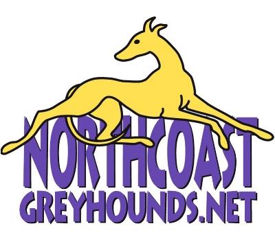 NCG Logo cropped.jpg