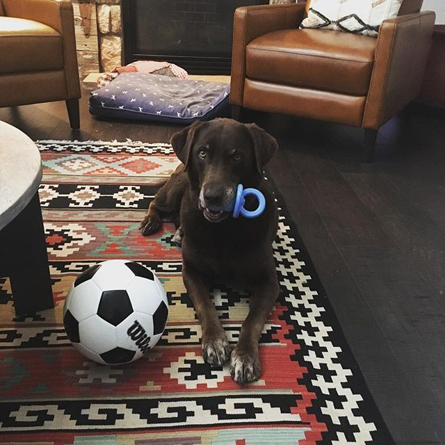 Riley is ready for  #babyboy with her new pacifier. Thanks @tamaraworle. She's also working on her foot skills. #worldcup2018
