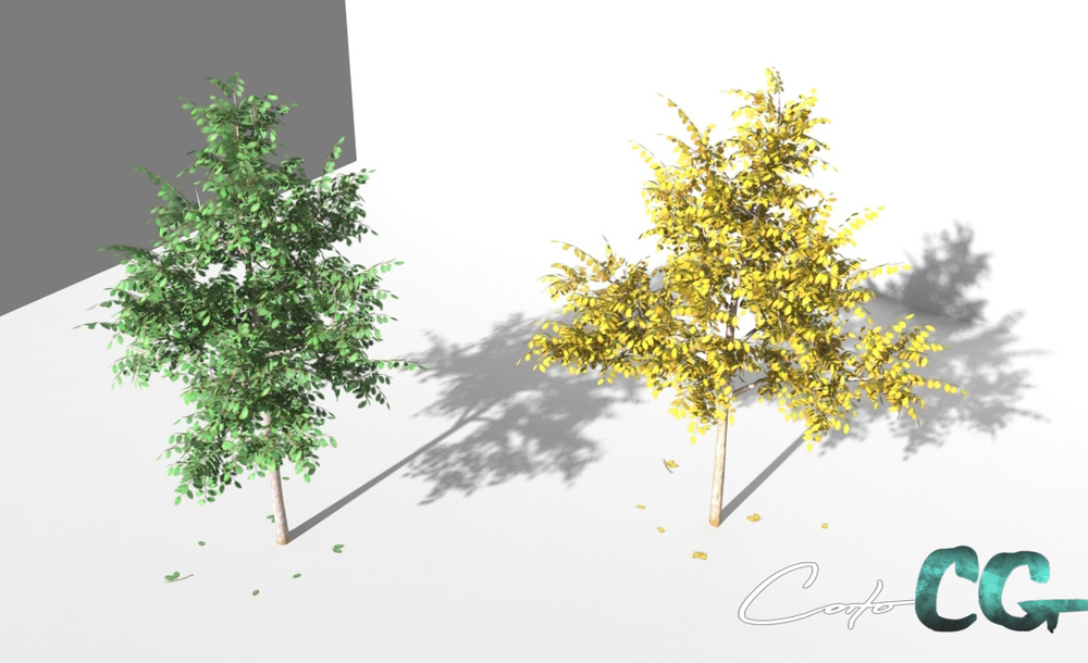 coitoCG_tree01_renderMR01