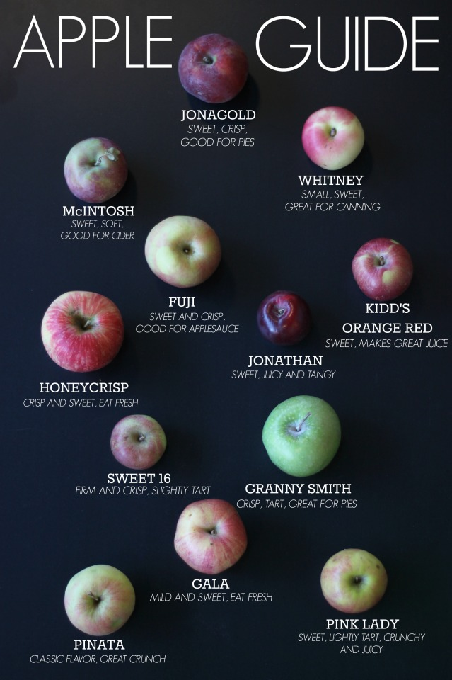AppleGuide