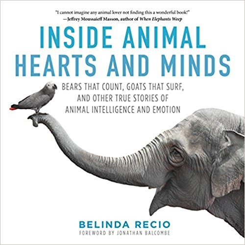 Inside animals hearts and minds.jpg