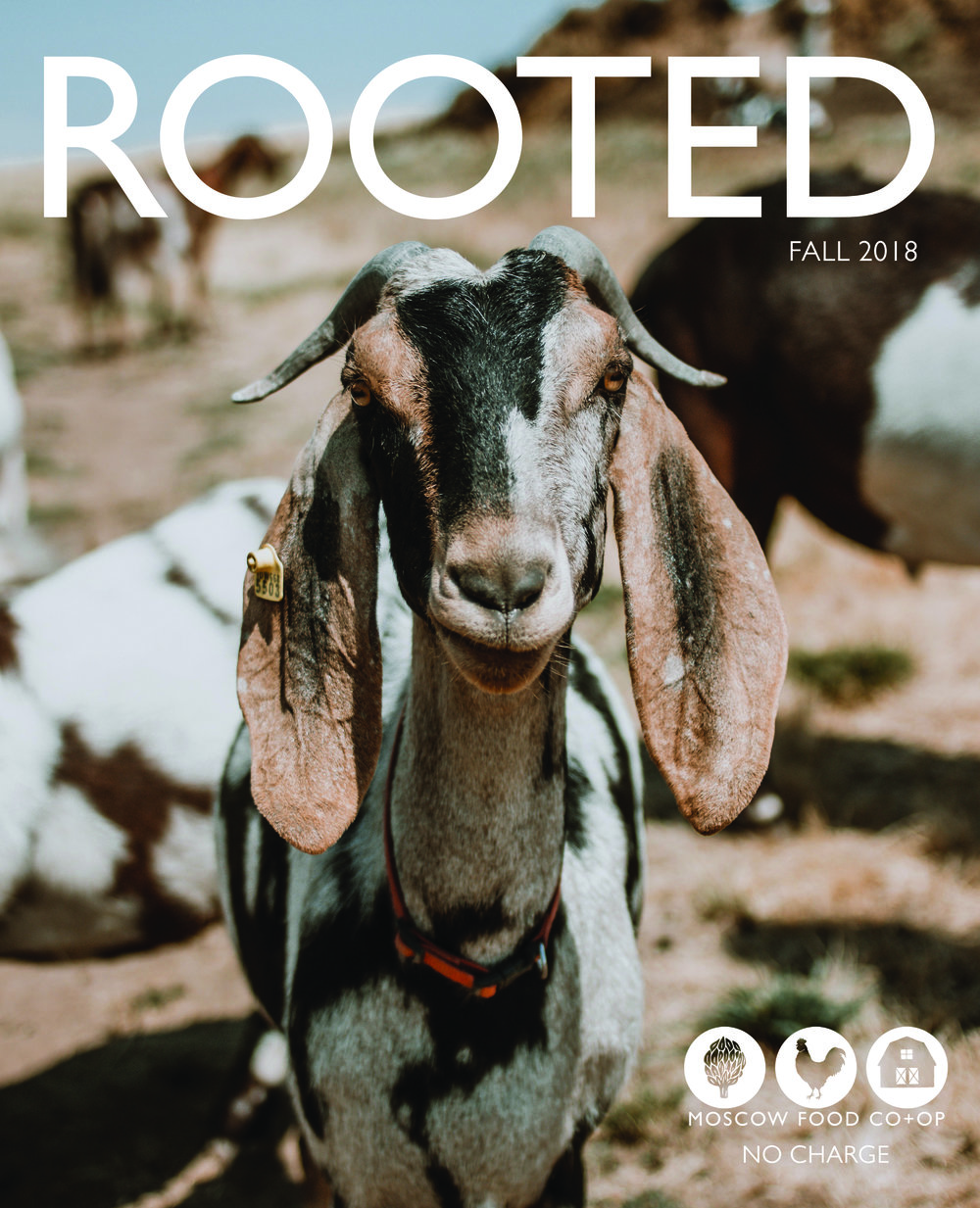 Fall 2018 - From upcoming events to Japanese dried persimmons you can make yourself, this issue of Rooted has it all. Check out our Garlic Guide and Mushroom Manual for tips and tricks for choosing the perfect variety for your meal! Also: read about Moonstruck Farms goat's milk soap and a spooky Halloween treat.