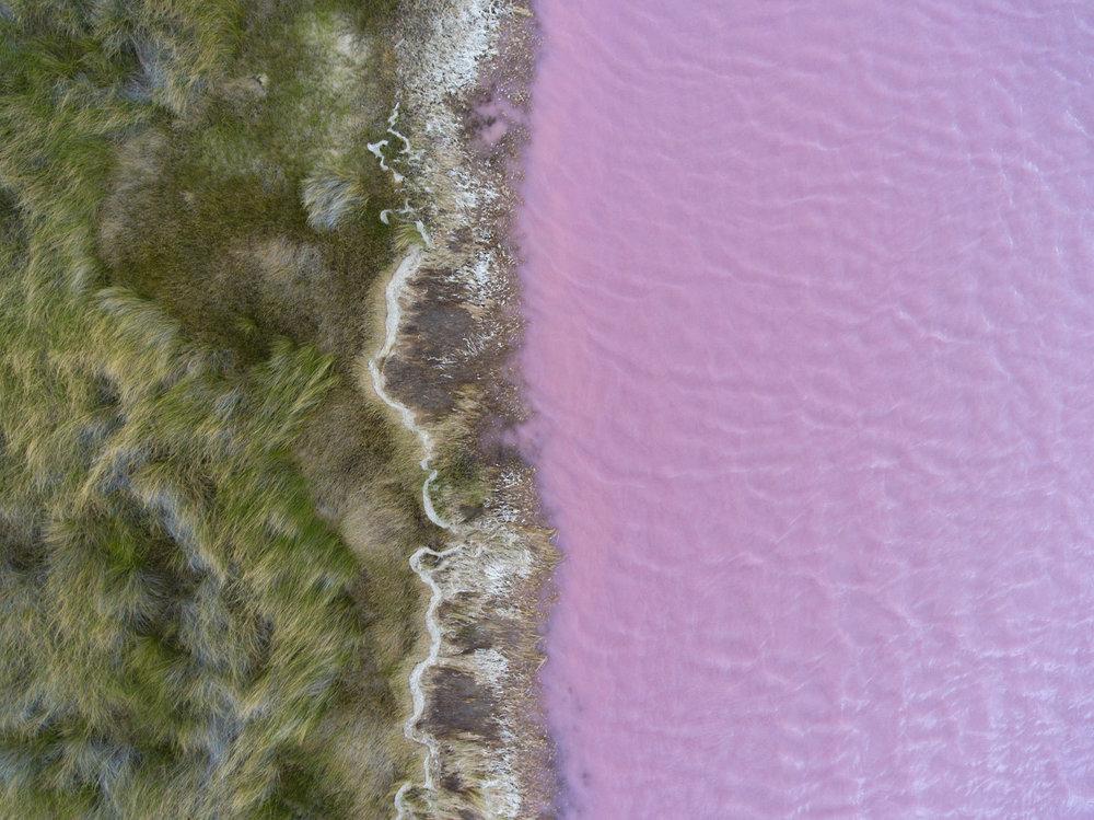 pinklake2.jpg