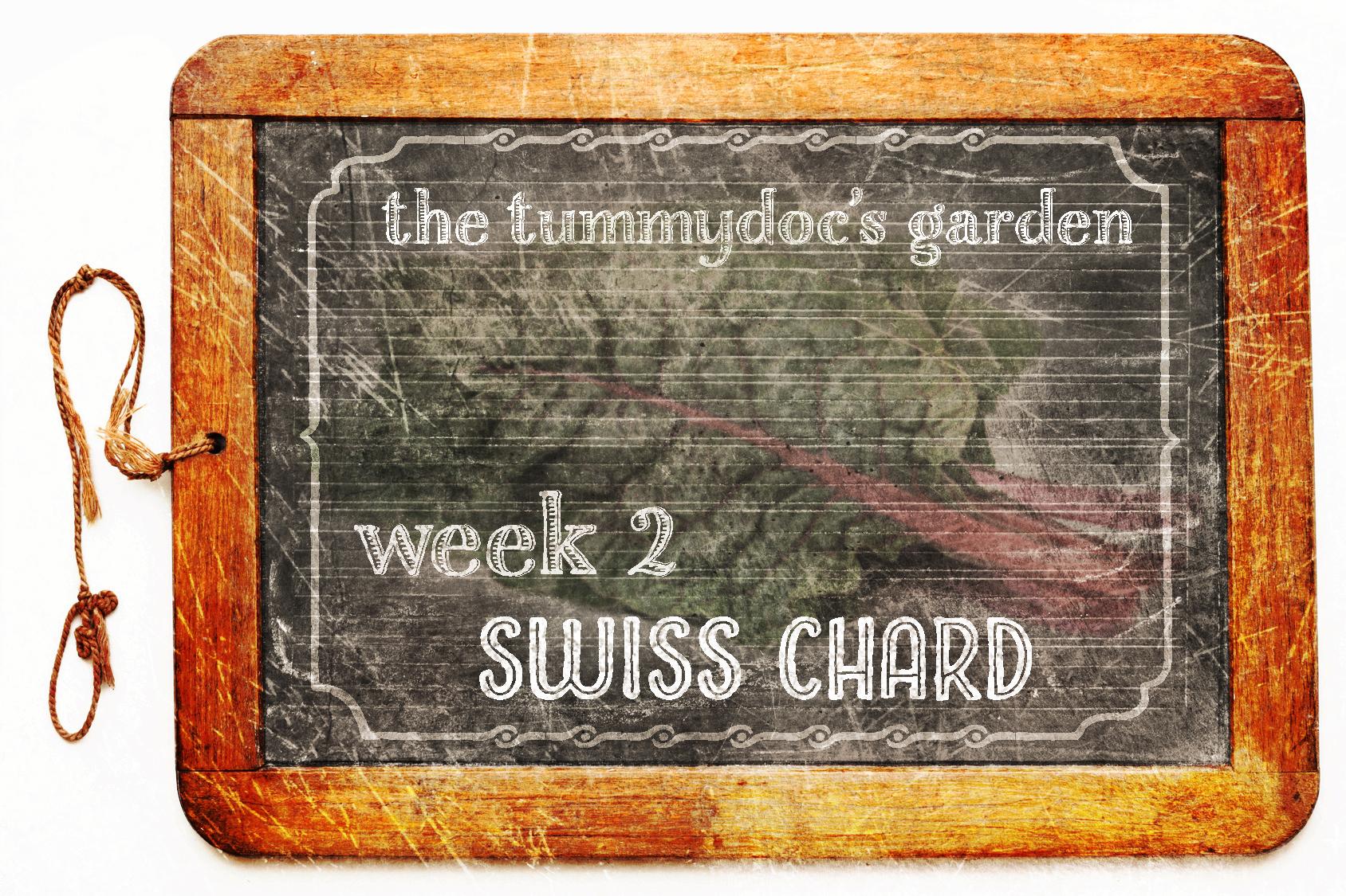 tummydoc's garden week 2