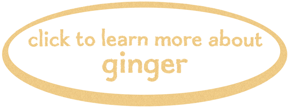 ginger button