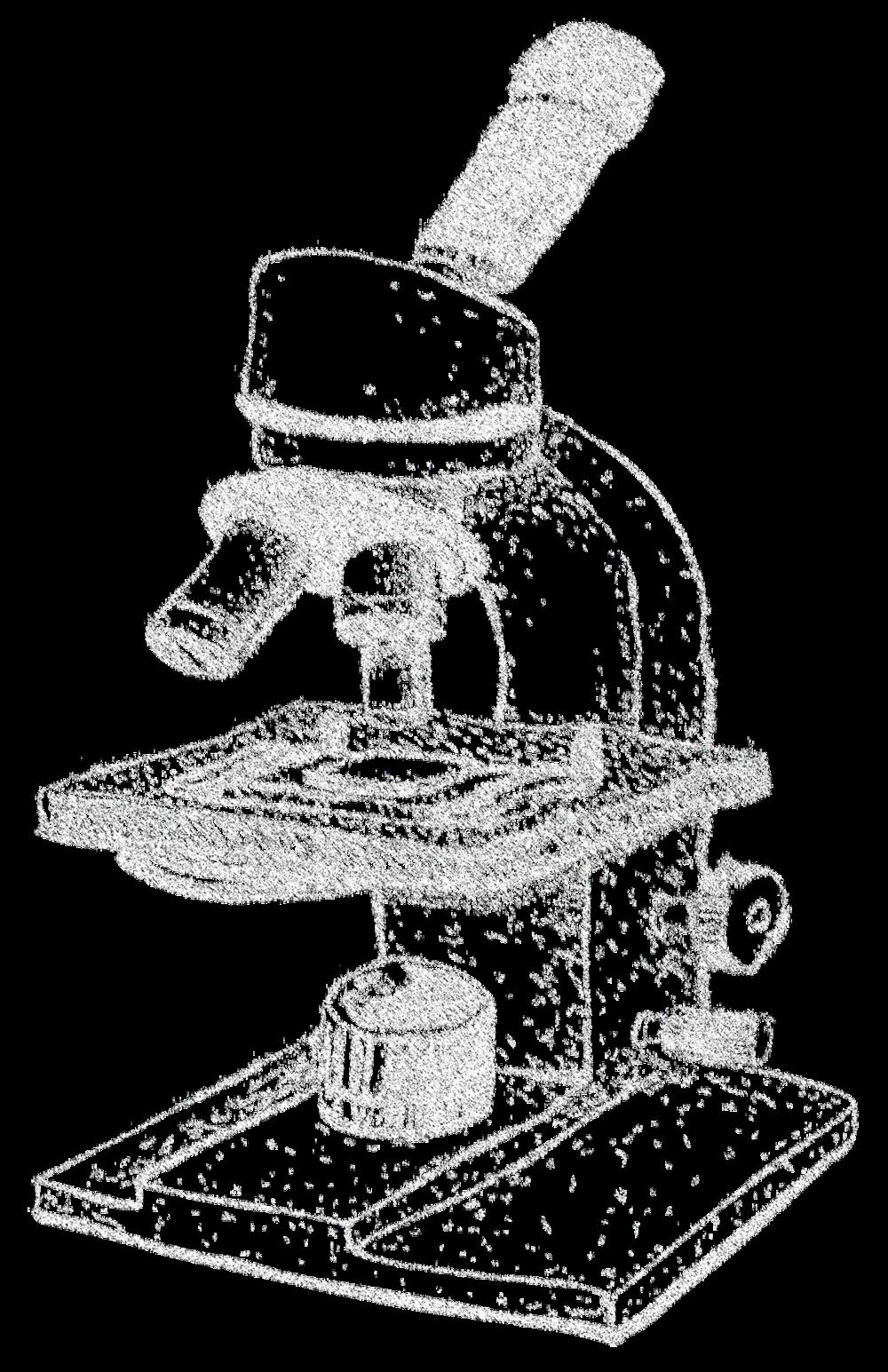 microscope pic
