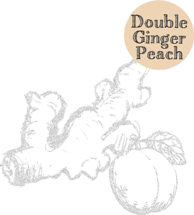 double ginger peach tummydrops