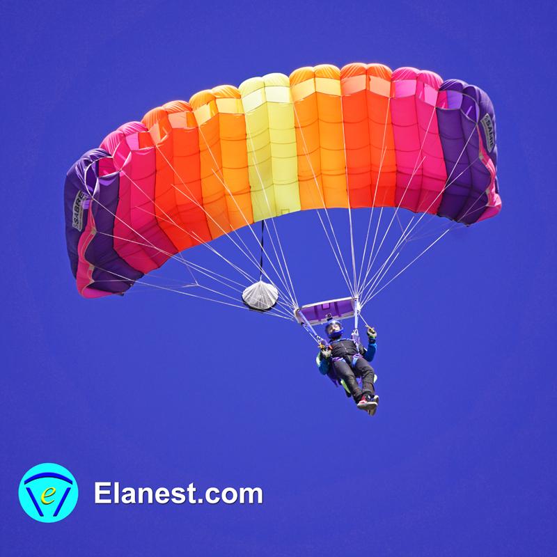 Elanest Pict 0005.jpg