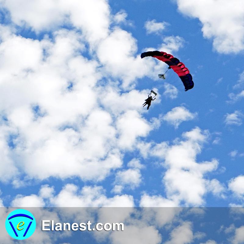 Elanest Pict 0007 800x800 SQ Styleised Edited DSC01876.jpg