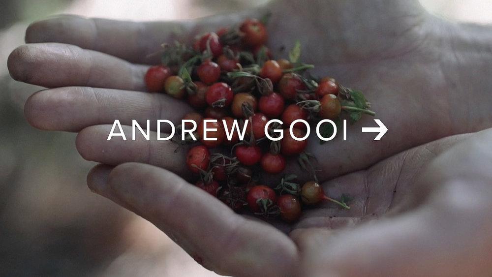 Andrew Gooi.jpg
