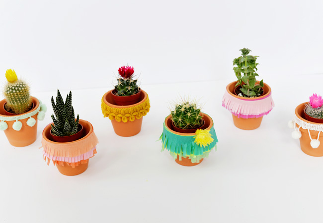 Festive and Crafty Cinco de Mayo Cacti Planters from  TheNest.com