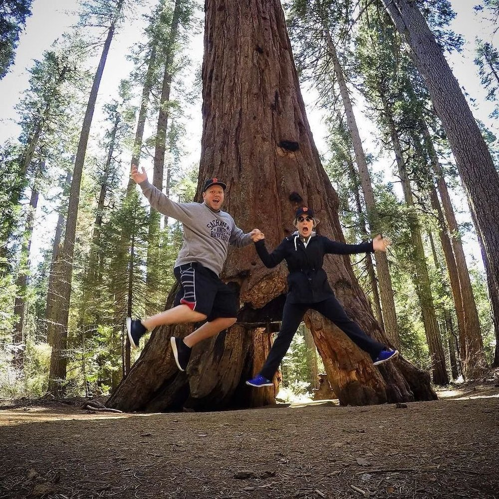 BIG TREES | ARNOLD, CA - JUL. 2016