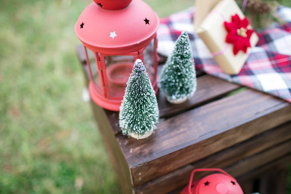 YOP_HolidaySamples-14.jpg