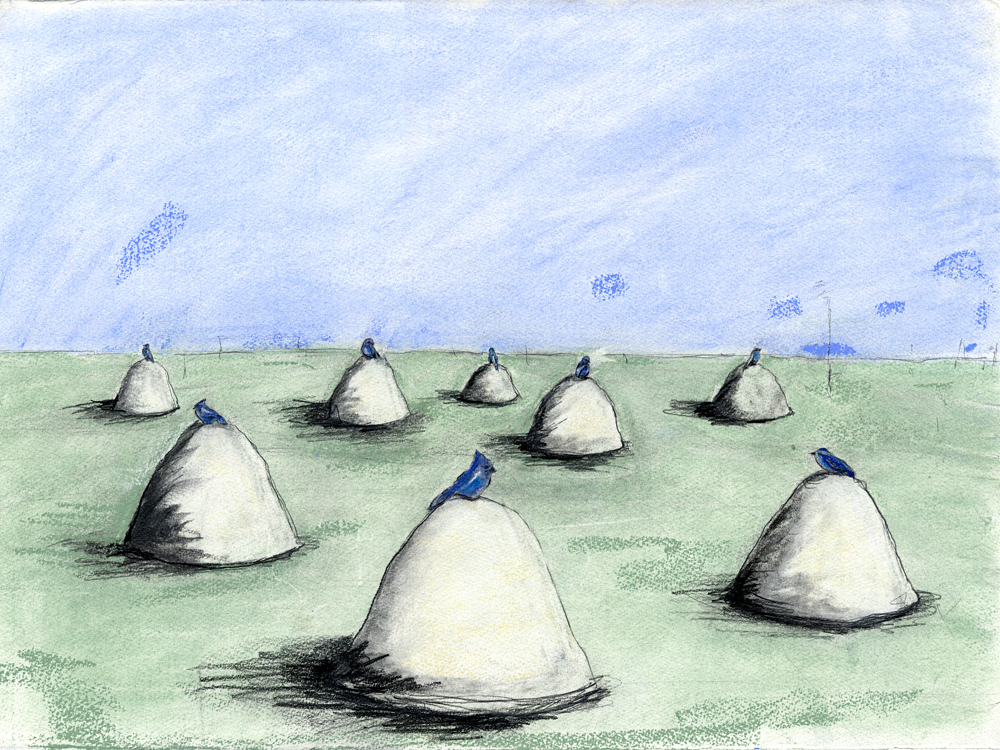Bird Mounds  , 2007 Watercolor and Pastel,On Paper 12 x 15 in. (30.48 x 38.1 cm)