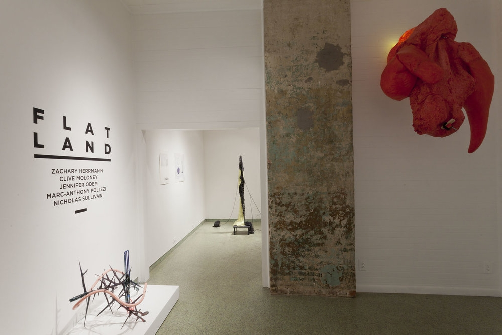 Jennifer Odem Installation view:   Flatland , 2015  The Front Gallery, New Orleans, LA