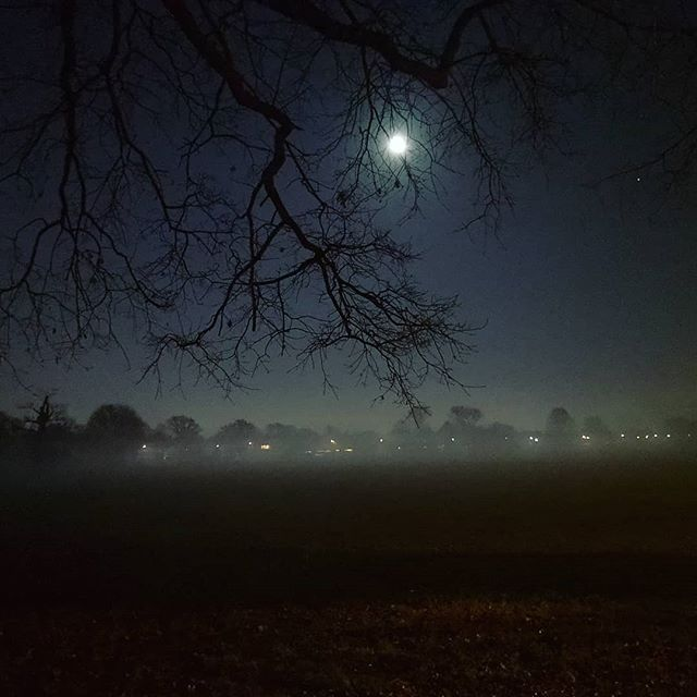 Merry Christmas #wanderlust #wonderful_places #lifestyle #night #nighttime #london #landscape #travel #uk #atmosphere #park #westlondon #foggy #view #panorama #nature #timewithfriends #haunted #greenspace #holy #sacredtime