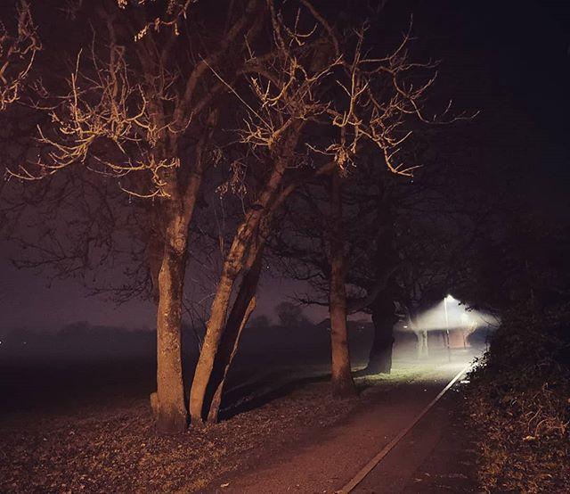 Merry Christmas #wanderlust #wonderful_places #night #nighttime #london #landscape #travel #uk #atmosphere #park #westlondon #foggy #view #panorama #nature #timewithfriends #haunted #greenspace #darkess #travelgram